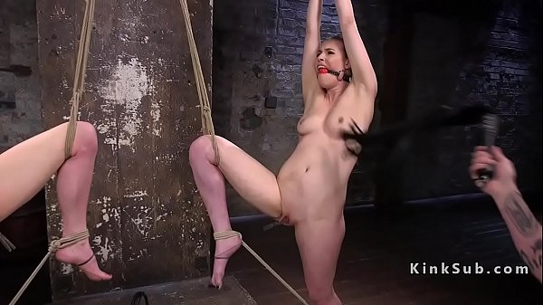 Tied, Whipping, Pain, Whip